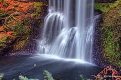 Silver Falls (pandt) Tags: silverfallsstatepark marioncounty oregon falls water waterfall southfalls foliage forest trees green orange white longexposure slowwater waterinmotion outdoor landscape flickr beautiful beauty pacificnorthwest canon eos slr 7d