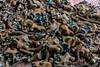 Pripyat School (Jorge Franganillo) Tags: prypyat kyivskaoblast ucrania ukraine chernóbil chernobyl prípiat pripyat abandoned abandonado urbandecay gasmask gasmasks máscaradegas máscarasdegas escuela