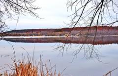 Trent River, Frankford, ON (Snuffy) Tags: trentriver frankford ontario canada fall autumn seasons