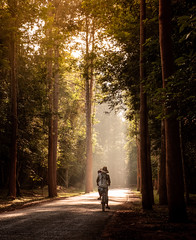 The Road to Prasat Preah Khan (ajecaldwell11) Tags: sun bicycle road ankh forest xe2 caldwell cambodia angkorwat fujifilm angkor