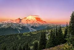 Radiant Rainier (Philip Kuntz) Tags: dawn daybreak firstlight sunup sunrise volcano degepeak degepeaktrail mtrainiernationalpark washington