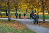 People in autumn park (AudioClassic) Tags: people colors photographythemes photography nopeople autumn colorimage day plant tree lushfoliage season forest woodland landscape nationalpark footpath parkmanmadespace september october branch leaf hiking shade comfortable goldcolored beechtree falling relaxation tranquilscene yellow orangecolor greencolor environment nature outdoors horizontal november estonia