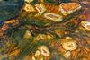 Melenas verdes (Alicia Clerencia) Tags: agua water mina mine amarillo yellow ocre ochre naranja orange verde green algas stone piedra río river