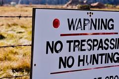 DSC00363 (baylersmith) Tags: minnesota state park nature statepark hunting dog fall