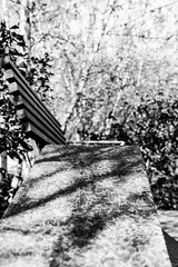 DSC_5801 (drkotaku) Tags: bw blackwhite blackandwhite manhattan newyorkcity nikond810 streetphotography streetphotographym