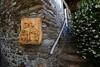 Val d'Aosta - Valle di Gressoney, Perloz: Chemp, il gelsomino (mariagraziaschiapparelli) Tags: valdaosta valledigressoney montagna mountain monterosa chemp perloz angelobettoni sculture estate allegrisinasceosidiventa