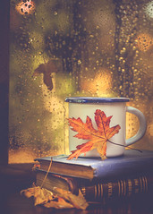 Books, tea and rain drops (Ro Cafe) Tags: autumn stilllife books cup leaves rain tea window nikkormicro105f28 nikond600 bokeh