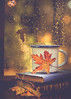 Books, tea and rain drops (RoCafe Off for a while) Tags: autumn stilllife books cup leaves rain tea window nikkormicro105f28 nikond600 bokeh