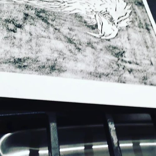 "Inked print reveal of the bald eagle linocut #video #linocut #lino #reveal #printmaker #printmaking  #reliefprint #blockprint • <a style=""font-size:0.8em;"" href=""http://www.flickr.com/photos/57802765@N07/38589521596/"" target=""_blank"">View on Flickr</a>"