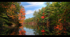 Horse Island in the Fall (Joe <3 Photography) Tags: horseisland pawtuckawaystatepark newhampshire fall foliage trees lake reflection blue sky red
