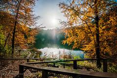 the last rays of autumn.jpg (MichalKondrat) Tags: natura szczecin liście zachodniopomorskie niebo pejzaż jezioroszmaragdowe krajobraz jezioro drzewa 1020mm jesień nikond300s polska przyroda woda poland województwozachodniopomorskie pl