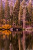 Fall Colors - Twin Lakes, Early Evening Reflections #2 (www.karltonhuberphotography.com) Tags: 2017 autumn california earlyevening easternsierra fallcolors fallcolorstrip forest karltonhuber lake lakeshore landscape mammoth mammothlakescalifornia monocounty peaceful placid reflections serene tranquil twinlakes verticalimage water