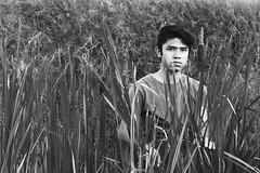 Autorretrato en el campo. (Alan Hurias) Tags: hierba autorretrato atardecer