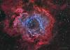 Rosetta HaOIIILRGB (Maurizio Cabibbo) Tags: telescope stars astronomy astrophotography night skynight long exposure nebula rosette monoceros science space