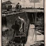 Das Buch für Alle ,Illustrierte familien Zeitung 1899, Ill  Torfproduktion b vorstich thumbnail