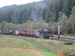 80136 and freight in north yard at Levisham 1Oct17