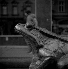 The Frog (Moryc Welt) Tags: diy id68 ilfordhp5400 asa400 iscanforlinux gimp epsonv600 katowice silesia poland europe wzfostart mediumformat 6x6 120