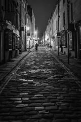 Cobbled Street - Bath (myfrozenlife) Tags: night england uk bath blackwhite 5dmkiii bw blackandwhite mono street bird