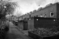 Elia Mews (cybertect) Tags: carlzeissvariosonnart2885mmf334 eliamews glc greaterlondoncouncil islington london londonboroughofislington londonn1 n1 sonya7 architecture building socialhousing