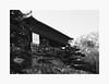 (bnishimoto) Tags: fuji fujifilm myfujifilm xpro2 35mm hakonegardens saratoga bayarea acros bw blackandwhite monochrome spring