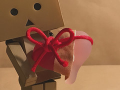 #MacroMondays #Buttonsandbows (....Natalie....) Tags: macromondays buttonandbows patch danbo bow schleife pflaster danboardmini