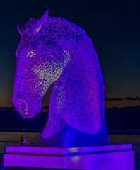 DSC_0012 (Paul Wynn Photography) Tags: standrewsdayirvineharbourilluminations familyfun nikondigital nikond5300 colours irvine irvineharbour scotland westcoast night harbour wetnwild groovy