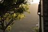 """Las Nieves (Tenisca """"Alexis Martín"""") Tags: puestasdesol ocaso sunset ocasos sunsets alexismartín alexismartin alexismartínfotos alexismartinfotos amfotos árboles árbol tree"""
