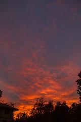 2017_12_10_la-sunset_14z