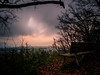 Dark autumn sky... (davYd&s4rah) Tags: fall autumn sky himmel clouds wolken leafs blätter dark orange bank forest em10markii m1240mm f28 olympusm1240mmf28 olympus longtime exposure langzeitbelichtung nd1000 neutraldensityfilter haida 7dwf