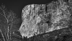 El Cap BW5 (danngrider) Tags: yosemite yosemitenationalpark mercedriver halfdome elcapitan bridalveilfalls yosemitefalls yosemitevalley