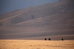 Three Riders (peterkelly) Tags: kyrgyzstan asia digital canon 6d gadventures centralasiaadventurealmatytotashkent songkul songkol songkultoo ridge mountain slope horses horse rider riding sunlit sunlight meadow alpine