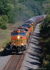 Westbound Worm (GRNDMND) Tags: trains railroads bnsf ci stratford illinois