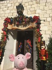 Dave and the Nutcracker Exhibit (pianoforte) Tags: dallas dallastx arboretum dallasarboretum dallasarboretumandbotanicalgardens christmas 2017 christmas2017 dave pig travelingnongnome