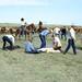 Livestock28 tif