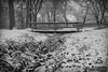 Biertuempful Park (SMPhotos2548) Tags: snow snowfall bridge union unioncounty unionnj nj beautiful