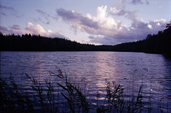 Ruuhilampi (amanda aura) Tags: film nuuksio espoo finland yashicat3 nature lake pond