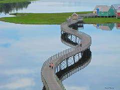 Passerelle calme / Calm boardwalk (deplour) Tags: passerelle boardwalk calme calm reflets reflections eau water baie bouctouche bay