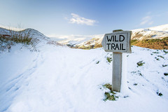 Follow the Wild Trail (Howie Mudge LRPS BPE1*) Tags: landscape nature ngc nationalgeographic wildtrail sign post sky clouds snow grass bracken bright sunny day december winter 2017 outside outdoors greatoutdoors hills gwynedd wales cymru uk travel walk walking walkabout sony sonyalphagang sonya7ii fotodioxprofusionadapter adapter adaptedlens canon1740mmf4l compactsystemcamera mirrorlesscamera sonyilce7m2 1740mmf4gssmoss