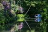 Basingstoke Canal, Surrey (fotosforfun2) Tags: basingstokecanal surrey barge water summer seasons green lilac canal blue boat shadow shade