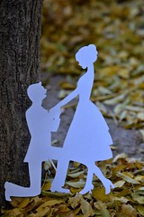 She said yes! (eunice.martinezavila) Tags: ring yes silhouettes little white autumn leaves texture