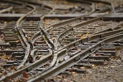 Confluence (Tony Tooth) Tags: nikon d7100 sigma 50500mm 500mm tracks rail rails railway marshallingyard points rudyard rudyardlakesteamrailway staffs staffordshire bigma