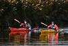 Kayaks (Mel Low) Tags: kayak watersports oultonbroad oultonmarsh nikond7200 suffolk
