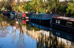 London (romanboed) Tags: leica m 240 summilux 50 europe england uk united kingdom london regents canal houseboats autumn fall city cityscape
