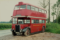 LYR 875: Porthcawl Omnibus Co, Kenfig Hill (chucklebuster) Tags: lyr875 rt3456 london transport porthcawl omnibus aec regent rt