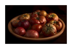 Summer Memories (sorrellbruce) Tags: gardening tomatoes softlight