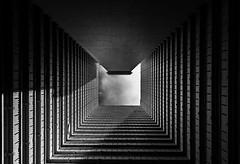 Up and up and up (**capture the essential**) Tags: 2017 architektur atrium estate fenster hauses hochhäuser hongkong häuser innenhof intothesky sky skyscraper sonya7m2 sonya7mark2 sonya7ii sonyfe1635mmf4zaoss sonyfe41635 sonyilce7m2 windows indenhimmel