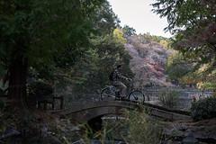 IMG_5995 (tohru_nishimura) Tags: eos5d smct8518 canon pentax takumar kichijoji inokashirakoen tokyo japan