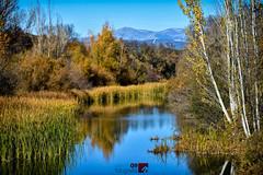 Río Manzanares | El Pardo | Madrid (alrojo09) Tags: alrojo09 ríomanzanares paisaje naturaleza sierra guadarrama otoño elpardo madrid spain