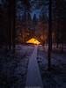 Campfire. (laurilehtophotography) Tags: 2017 luontopolku nyrölä syksy suomi finland nikon d610 sigma 20mm art campfire fire fireplace nature snow autumn fall trees duckboards forest path night evening amazing earth europe outdoor sundaylights