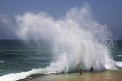 (8/12: Personification) Rage (ponzoñosa) Tags: personification literary devices atlantic atlántico rage ocean oceano wave ola azenhas mar sea 52weeks summer verano